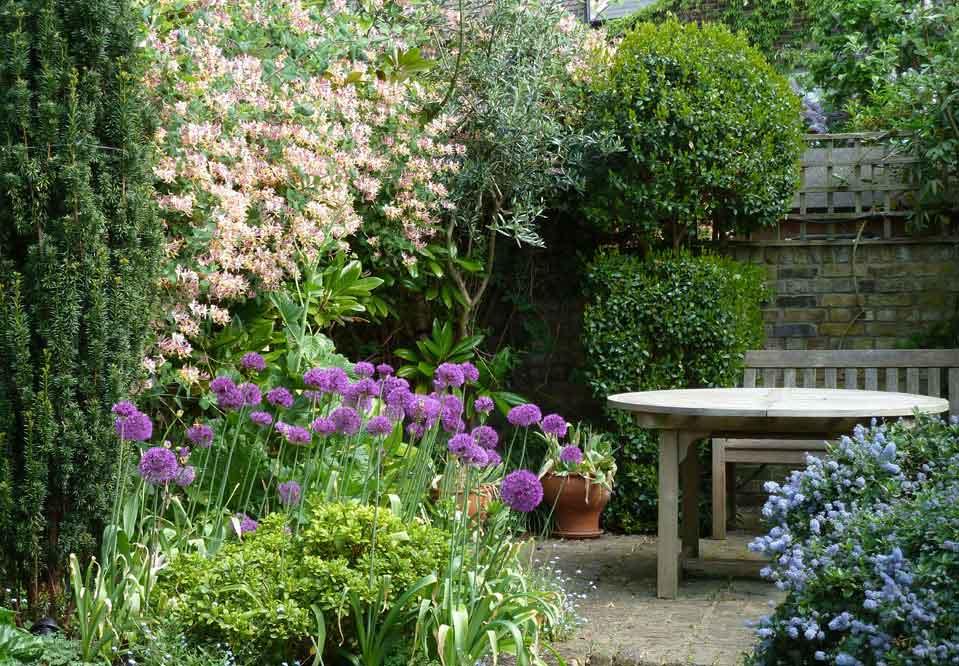 Yoakley Road London Garden Design Dilip Lakhani